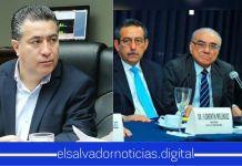 Portillo Cuadra critica a la Sala de lo Constitucional por mantener una «política de avestruz»
