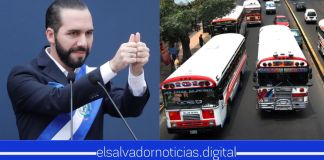 Transportistas se unen a las medidas del Gobierno y reiniciarán servicios a partir del 7 de julio