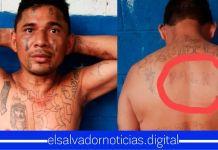 Capturan a peligroso pandillero de la 18 con el FMLN tatuado en la espalda