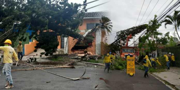 Equipo de Obras Públicas atiende de manera inmediata emergencias que se presentan por fuertes vientos a causa de ETA