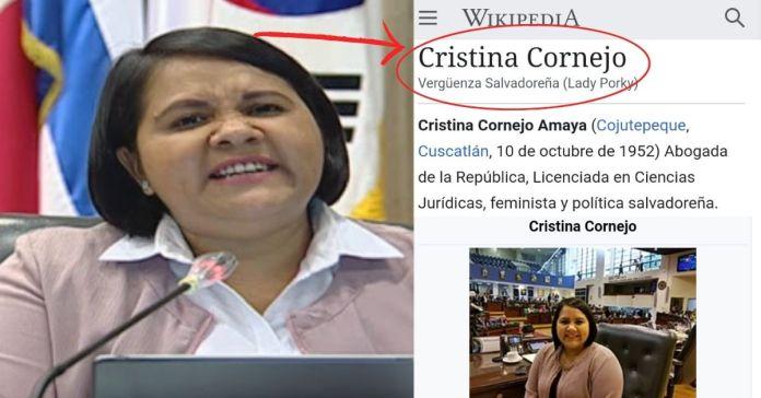 Salvadoreños ponen a prueba buscar en Internet: Cristina Cornejo y Wikipedia se burla tirando «Vergüenza Salvadoreña»