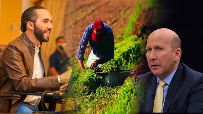 Nayib Bukele le cierra la boca a Javier Simán con el Plan Maestro de Agricultura, el cual busca generar 2 millones de empleos