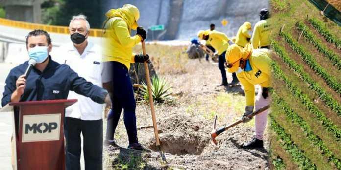 Obras Públicas inicia excavación de los puntos donde serán sembrados más de un millón de árboles en el ByPass de La Libertad