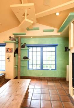 Gatunizar tu casa - DIY - Feliway