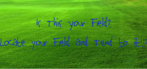 Are you in your field