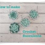 How to make crochet succulents