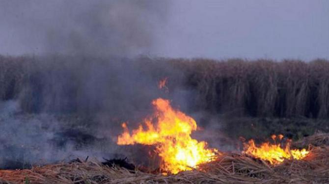 La quema de pastizales provoca la muerte de un hombre  en Santa Lucía