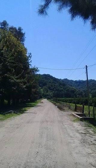 Vecinos del Naranjo denuncian que empleados de la SAT los amenazan con cortar el agua a machetazos