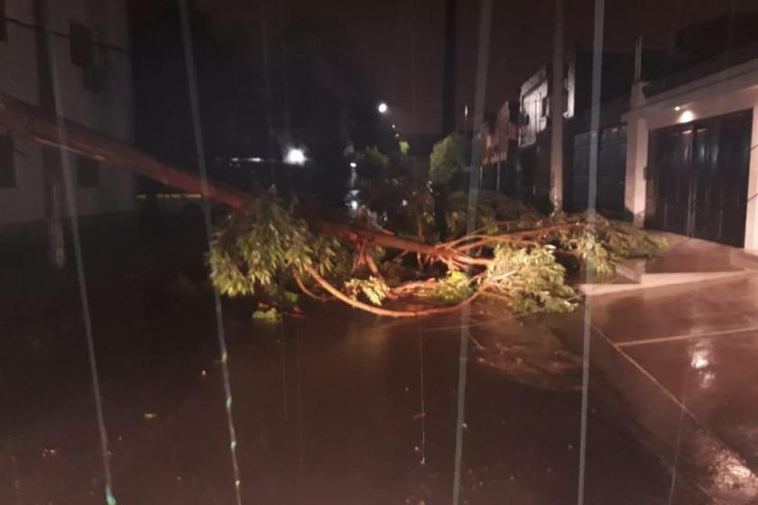 La tormenta que se abatio sobre Tucuman dejo  árboles caídos, casas inundadas y cortes de luz en distintos puntos de la provincia