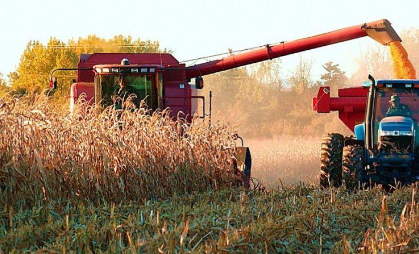 Tras el cierre de exportaciones al maíz, el campo empieza a organizar movilizaciones