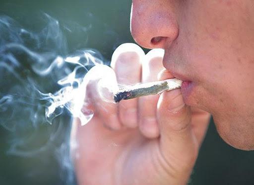 GRAVE: El consumo de marihuana desplazó al tabaco entre los universitarios