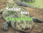 Soñar con cocodrilos significado