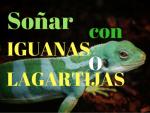 Soñar con iguanas o lagartijas