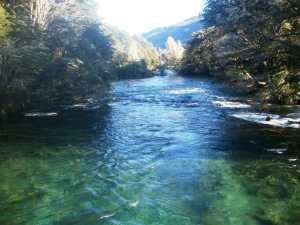 interpretacion de soñar con rios