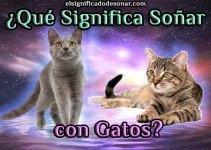 Qué Significa Soñar con Gatos?