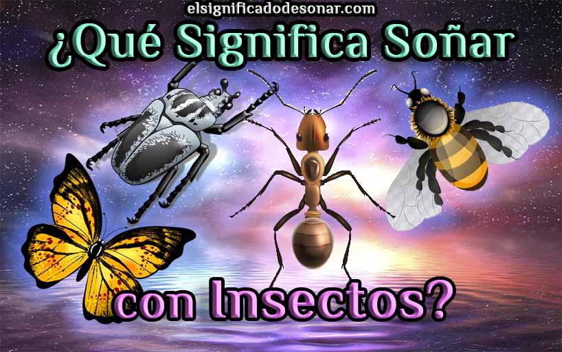 Qué Significa Soñar con Insectos?