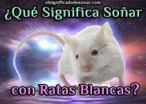 Qué Significa Soñar con Ratas Blancas?