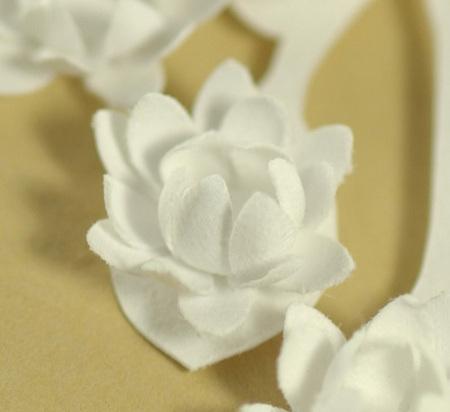 6white_flower_copy