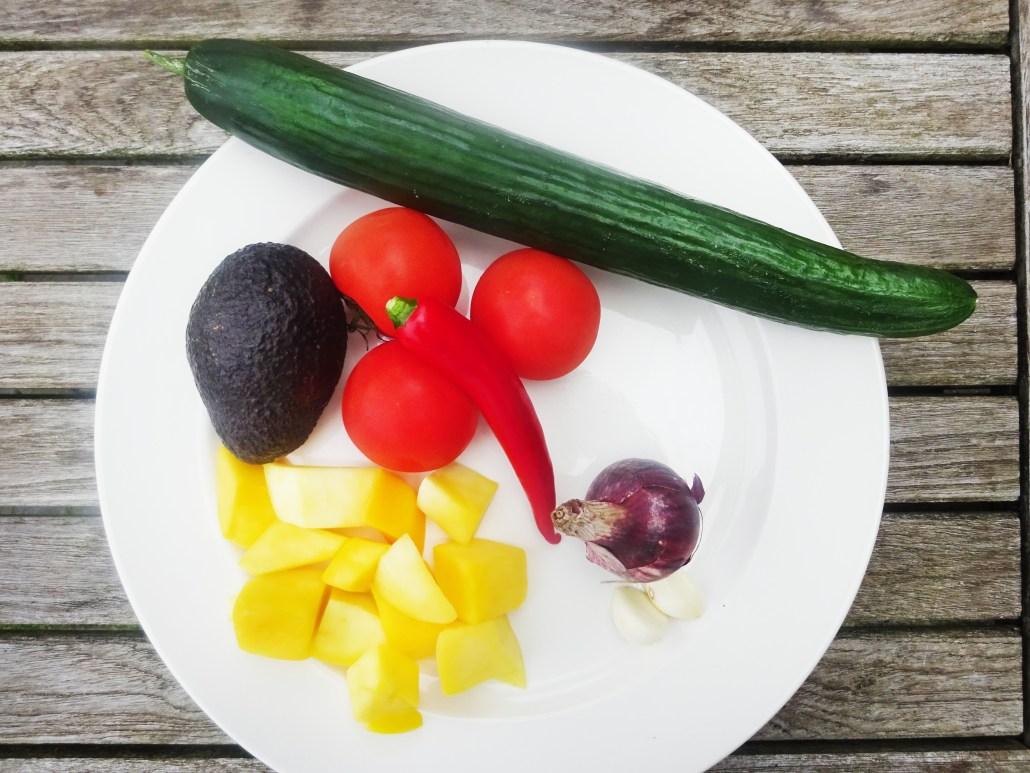 mango komkommer tomatensalsa