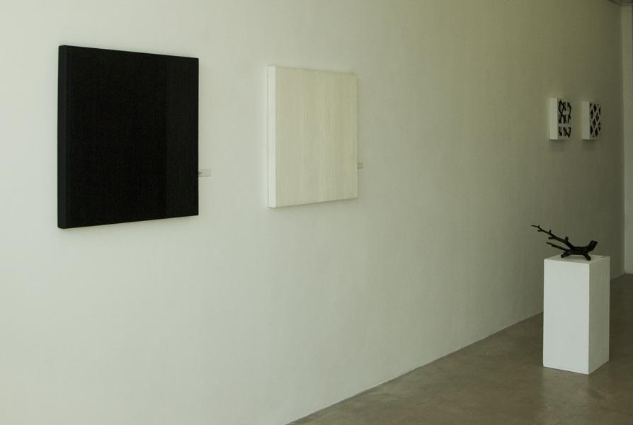 Els Moes, Gallery / artproject Rob de Vries, 2011
