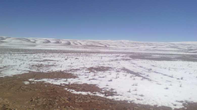 El altiplano en la Región de Tarapacá.