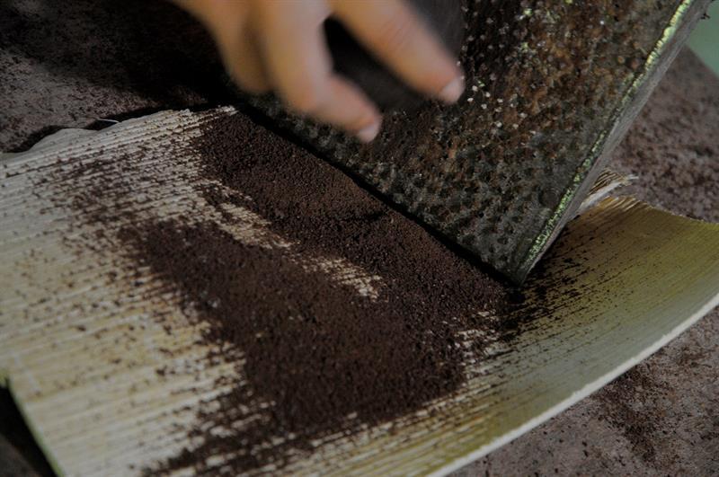 El nuevo habito que genera preocupación en Estados Unidos — Inhalar cacao