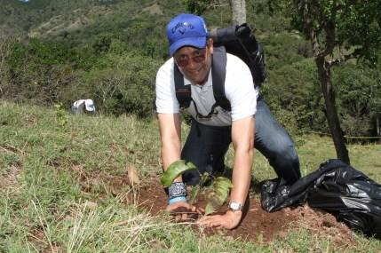 Empleados del Popular siembran 6,200 árboles