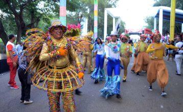 Segundo domingo Carnaval de Santiago 2020 (4)