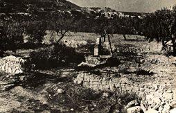 Un hort (i el seu pou de pedra) dels molts que sempre hi ha hagut a la Vall