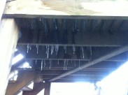 Icicles on the back stair