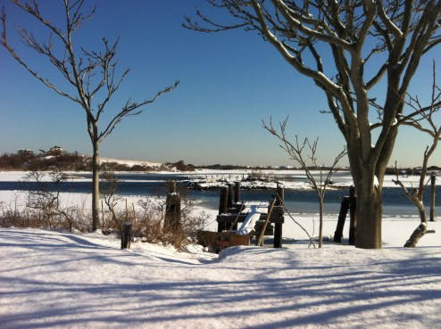 At BIMI looking over the half frozen Great Salt Pond
