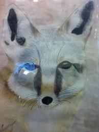 Avery, the fox