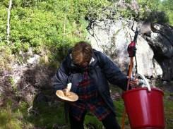 F examines the fungus