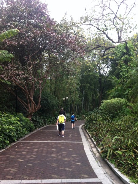 Like other chinese tourist sites, no scramble up, a paved road all the way