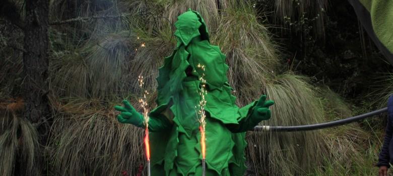 Festejan al árbol en el Nevado de Colima