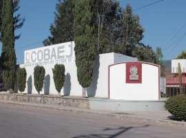 COBAEJ participará en concurso en Baja California