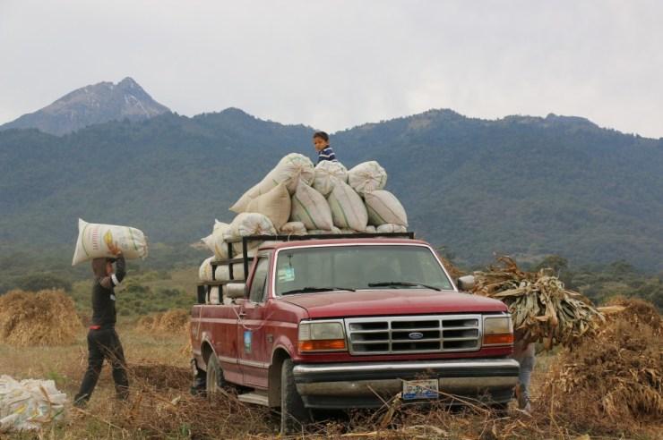 Campesinos al pie del Nevado de Colima.