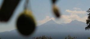 Así se privatiza el manantial del Nevado de Colima