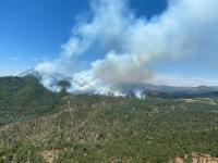 Hay tres incendios activos en el sur de Jalisco