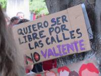 Imagen: Colectiva Volcánica
