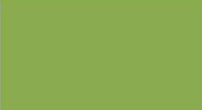 greenery, color, verde, pantone, 2017, tendencia, inspiracion,