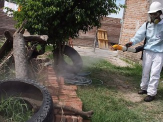 fumigacion-dengue