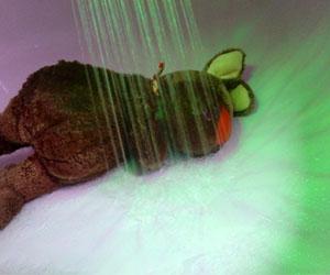 Zur Strafe unter die Dusche!