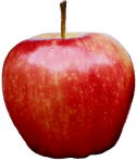 apple_PNG4938