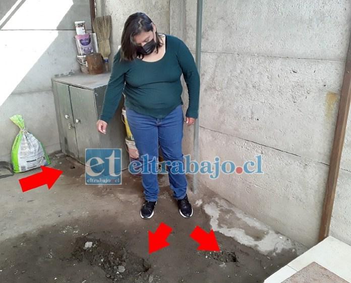 Una de las vecinas afectadas del Condominio Peumayén por la presencia de ratones en su casa.