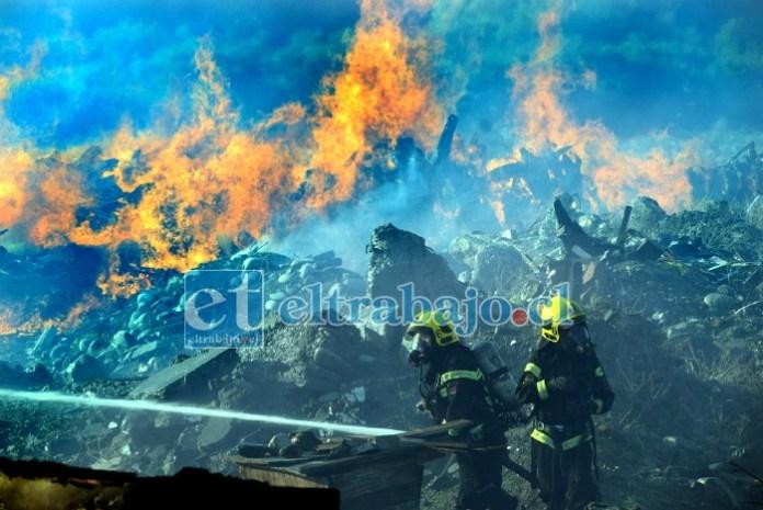 DAVID CONTRA GOLIAT.- Por casi 30 horas consecutivas los bomberos del Valle de Aconcagua debieron emplearse a fondo para controlar las llamas que devoraban todo a su paso.