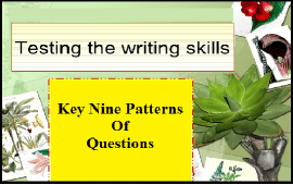 patterns of questions to test writing skills