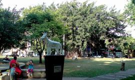 Monumento a Teddy de Cali, Colombia