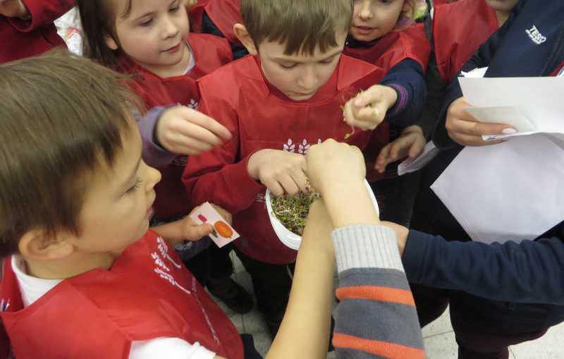 Wycieczki edukacyjne dla uczniów z Lubina i okolic
