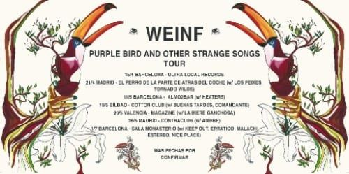 Weinf presenta el vídeo de 'Carefulness and Other Bad Advice'